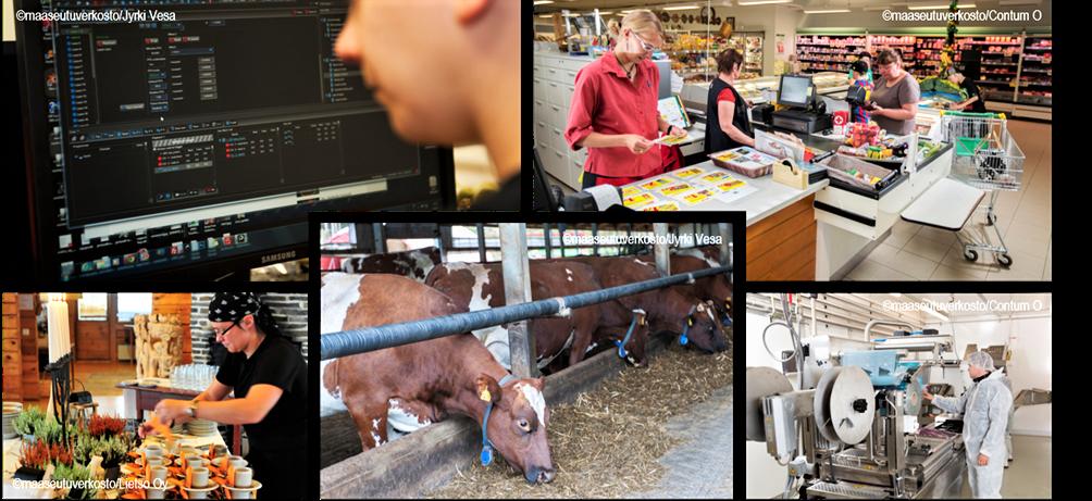 Valokuvakollaasi, jossa viisi valokuvaa. Kuvissa kaupan kanssa, ruokapöytä sekä lehmiä.
