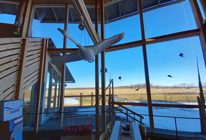 Valokuva Limingan Luontokeskuksen ikkunasta, josta näkyy peltoja.