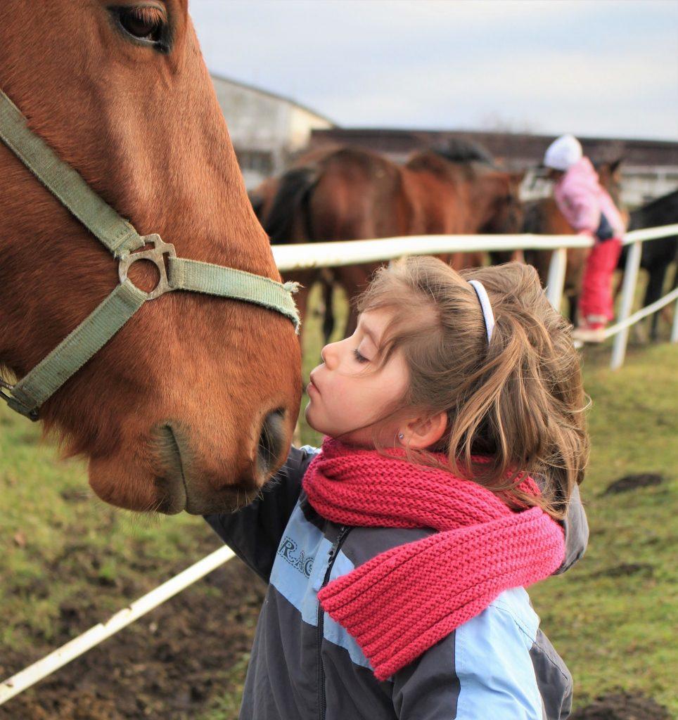 Valokuvassa pieni tyttö ja hevonen.